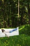 Ta sig en tupplur i grön skog Arkivfoton