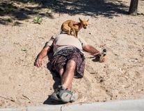 Ta sig en tupplur på stranden med en Chihuahua Royaltyfri Bild