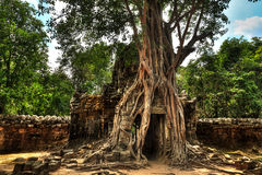 Ta Som entry. Architecture of old buddhist Ta Som temple in Angkor Archeological area Royalty Free Stock Photography