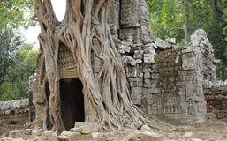 Ta Som temple. Cambodia Angkor Ta Som temple Stock Image