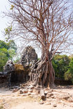 Ta Som temple, Angkor area, Siem Reap, Cambodia Royalty Free Stock Photos