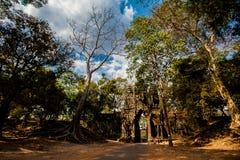 Ta som temple Angkor Cambodia Stock Images
