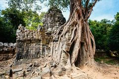 Ta Som temple. Ta Som jungle temple in Angkor Archeological area in Cambodia Stock Photos