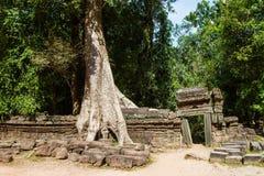 Ta-studentbal tempel, Angkor, Cambodja Fotografering för Bildbyråer