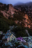Ta Teisia tis Madaris at Sunrise, Cyprus Stock Photos