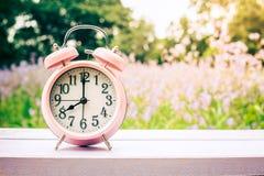 Ta tid på på trä i morgonen, suddig naturbakgrund Royaltyfria Foton