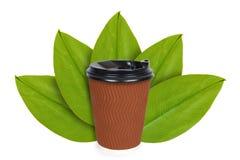 Ta ut kaffe i disponibel thermo kopp på bakgrunden av gröna sidor Isolerat på vit begrepp av det naturliga ursprunget arkivfoton