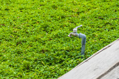 Tab water valve. On grass field Royalty Free Stock Images