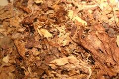 Tabac image libre de droits