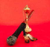Tabacco pipe and hookah. Indian tabacco pipe and hookah on a red background Stock Image