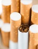 Tabacco in sigarette Fotografie Stock Libere da Diritti