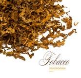 Tabaco imagem de stock