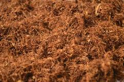Tabaco Imagen de archivo libre de regalías