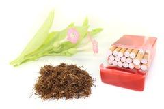 Tabaco con la caja y los flores de cigarrillos imágenes de archivo libres de regalías