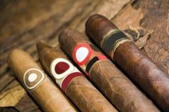 Tabaco de charutos rolado mão Nicarágua imagens de stock
