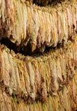 Tabaco de sequía fotos de archivo libres de regalías