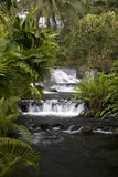 Tabacon Springs VI Royalty Free Stock Photography
