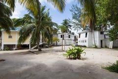 Tabaczny Cay w Belize Zdjęcie Stock