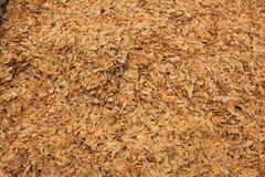 Tabak Stock Afbeeldingen