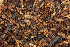 tabak Stockfotos