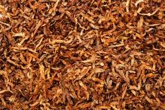 Tabak-Hintergrund Lizenzfreie Stockfotos
