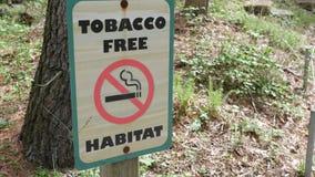 Tabakfreizonezeichen nahe Waldfläche am Sommernachmittag stock video