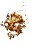 Tabakschädel Lizenzfreie Stockfotografie