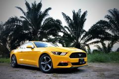 Ford Mustang. Tabasco, Mexico - May 22, 2017: Yellow supercar Ford Mustang at the countryside royalty free stock photos