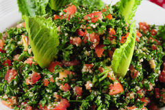 Free Tabbouleh Stock Images - 12195554