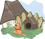 The tabby cat and a doghouse cartoon Royalty Free Stock Photos