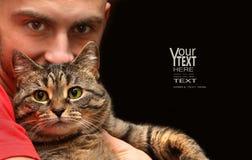 tabby d'homme de fixation de chat Images stock