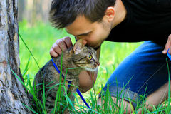 Tabby house cat first time outdoors on a leash and its owner. Scared nervous tabby domestic pet cat first time walking outside on a leash with its male owner stock photo