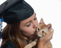 Tabby kitten receiving a kiss Royalty Free Stock Photos