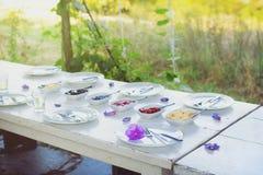 A tabela branca exterior do vintage ajustada para o café da manhã decorou agradavelmente com as flores violetas frescas e aliment foto de stock royalty free