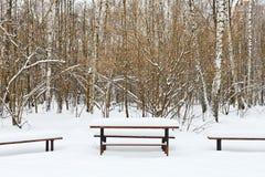 Tabela coberto de neve e bancos na área de recreação Fotos de Stock Royalty Free