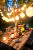 Tabela completamente dos aperitivos e do vinho no jardim iluminado imagem de stock
