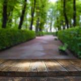 Tabela da placa de madeira do vintage na frente da paisagem sonhadora e abstrata do parque Imagens de Stock Royalty Free