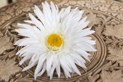 Tabela de madeira branca de Daisy Flower On Vintage Carved imagem de stock royalty free