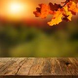 Tabela de madeira com fundo do outono imagem de stock royalty free