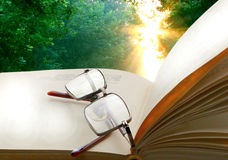 Tabela de madeira dos vidros abertos do livro em um fundo do nascer do sol no parque Imagem de Stock Royalty Free