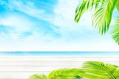 Tabela de madeira e ramos verdes da palma com vista para o mar azul foto de stock
