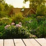 A tabela de madeira em um fundo do jardim floresce Fotos de Stock Royalty Free