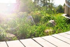 A tabela de madeira em um fundo do jardim floresce Foto de Stock Royalty Free