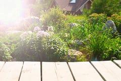 A tabela de madeira em um fundo do jardim floresce Fotografia de Stock Royalty Free