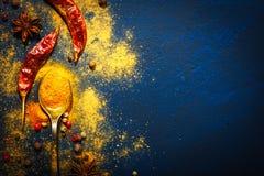 Tabela de madeira de especiarias coloridas Alimento, indiano imagem de stock royalty free