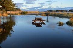 Tabela de madeira que afoga-se na lagoa fotos de stock royalty free