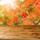 A tabela de madeira vazia sobre a queda sae do fundo Um conceito da estação do outono fotos de stock royalty free