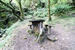 Tabela de madeira velha e rústica com os bancos para piqueniques em uma clareira Imagem de Stock