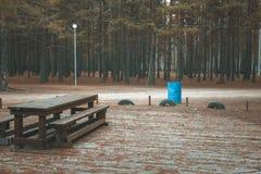 Tabela de piquenique de madeira na floresta do outono Foto de Stock Royalty Free