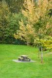 Tabela de piquenique no gramado verde em um parque Fotos de Stock Royalty Free